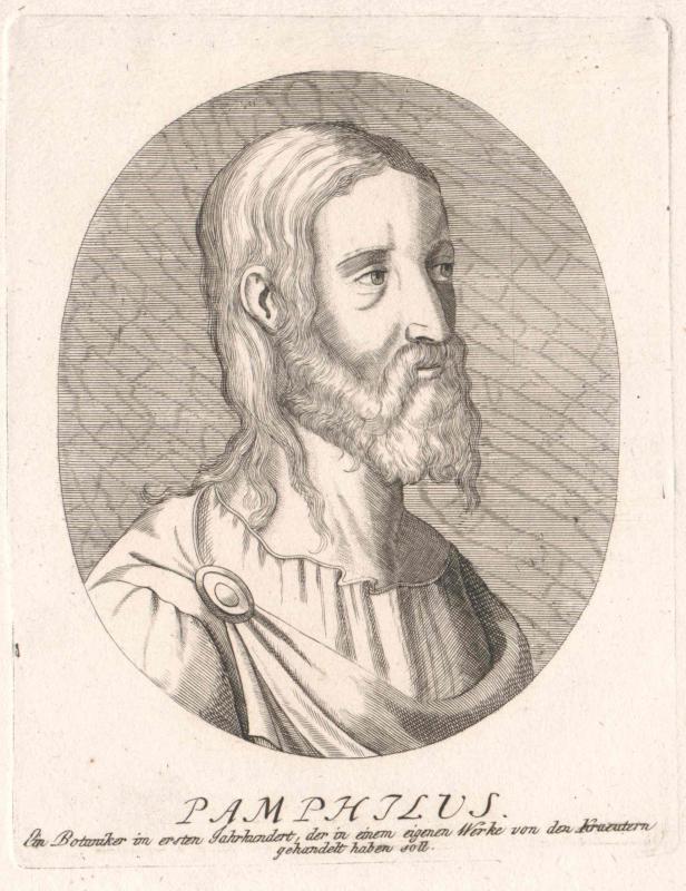 Pamphilius