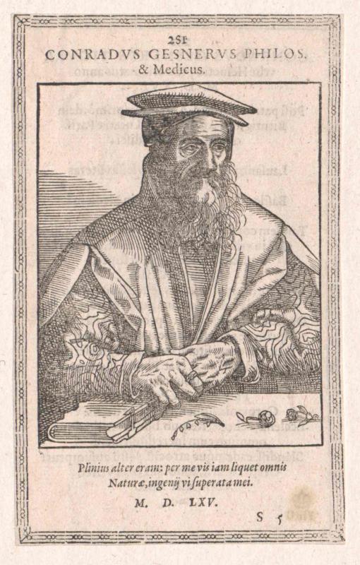 Gesner, Konrad