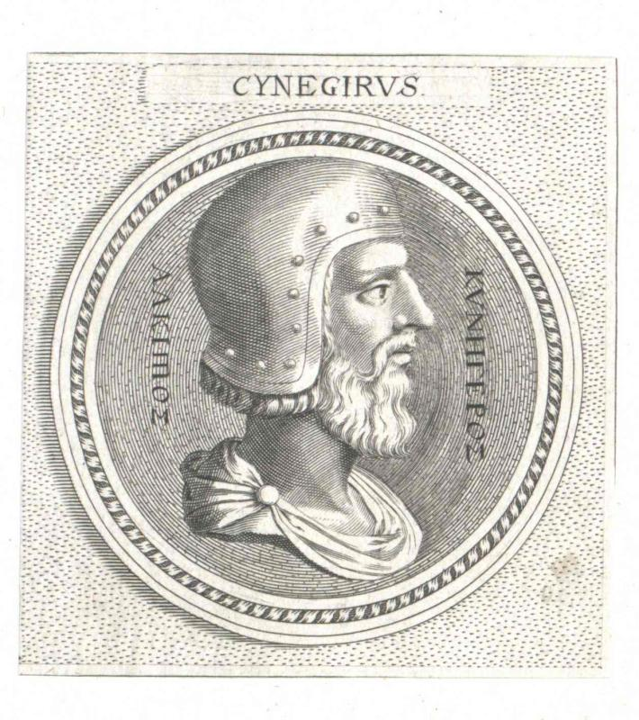 Cynegirus