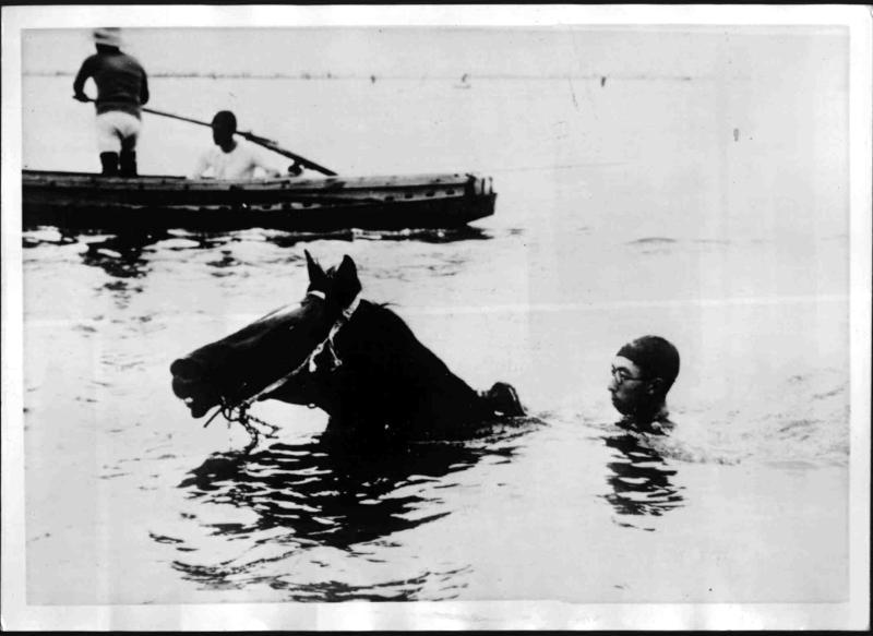Wettschwimmen für Pferde in Japan