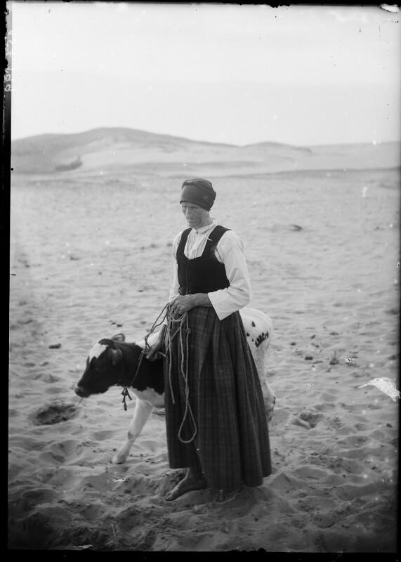 Frau mit Kalb in Dünenlandschaft