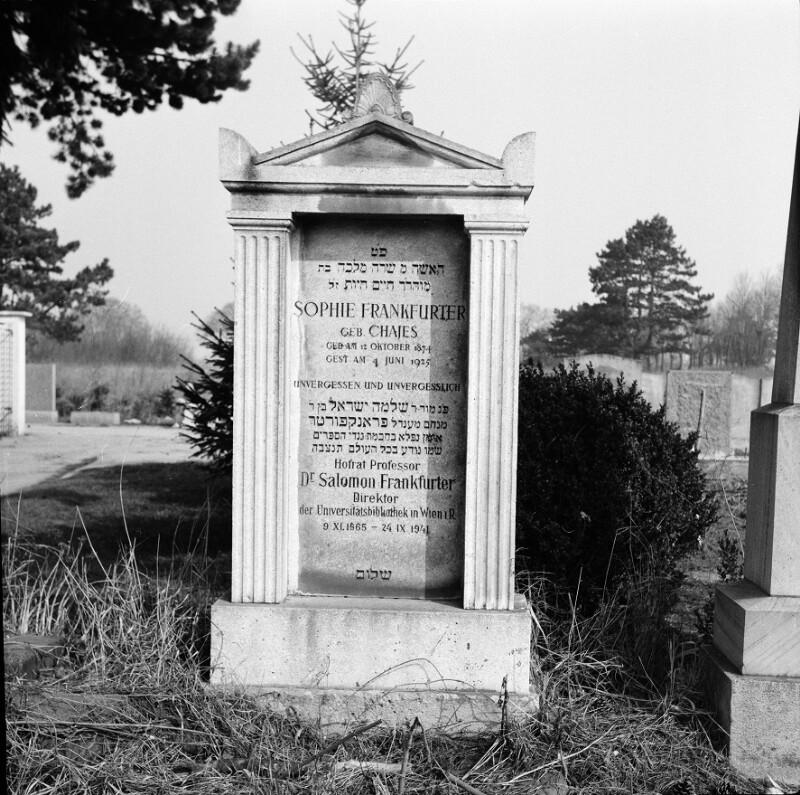 Wien 11, Zentralfriedhof