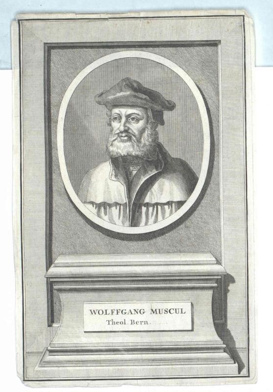 Musculus, Wolfgang