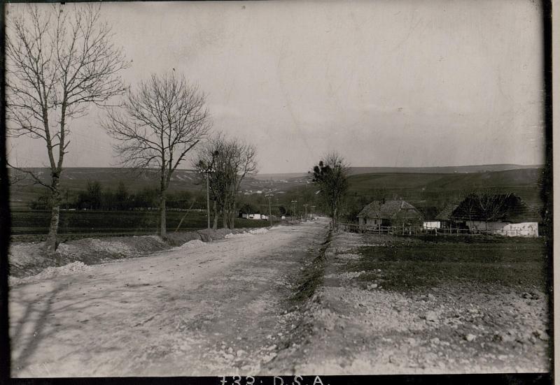 Blick auf das Gelände Brzezany Lesniki.