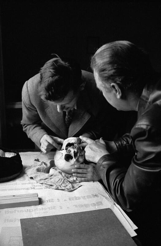 Zwei Pathologen untersuchen den Schädel des Komponisten Joseph Haydn, 1954