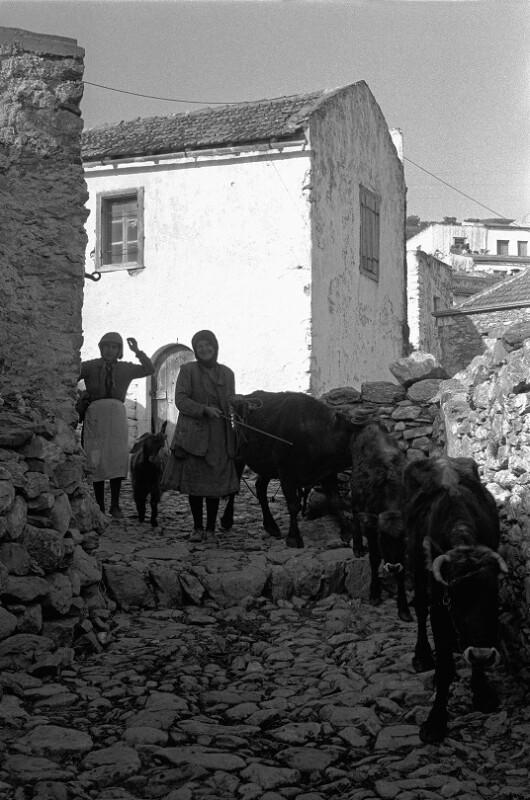 Bäuerinnen mit ihren Kühen, Kreta