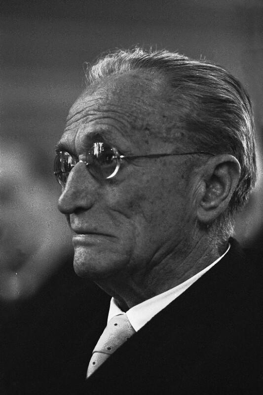 Hans Thirring, Physiker und sozialdemokratischer Politiker