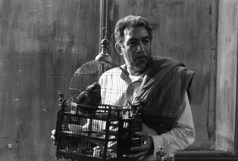 "Anthony Quinn als ""Zorba the Greek"" (""Alexis Sorbas""), Kreta, 1964"