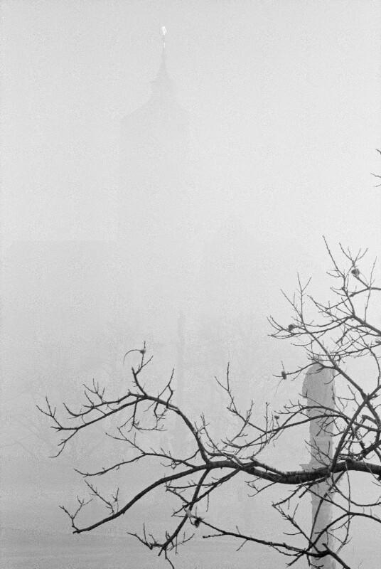 Burg Forchtenstein im Nebel