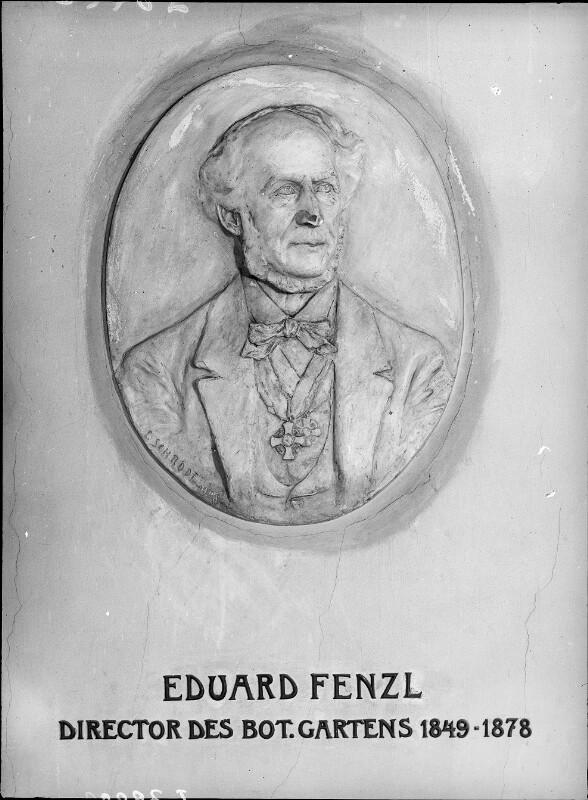 Fenzl, Eduard