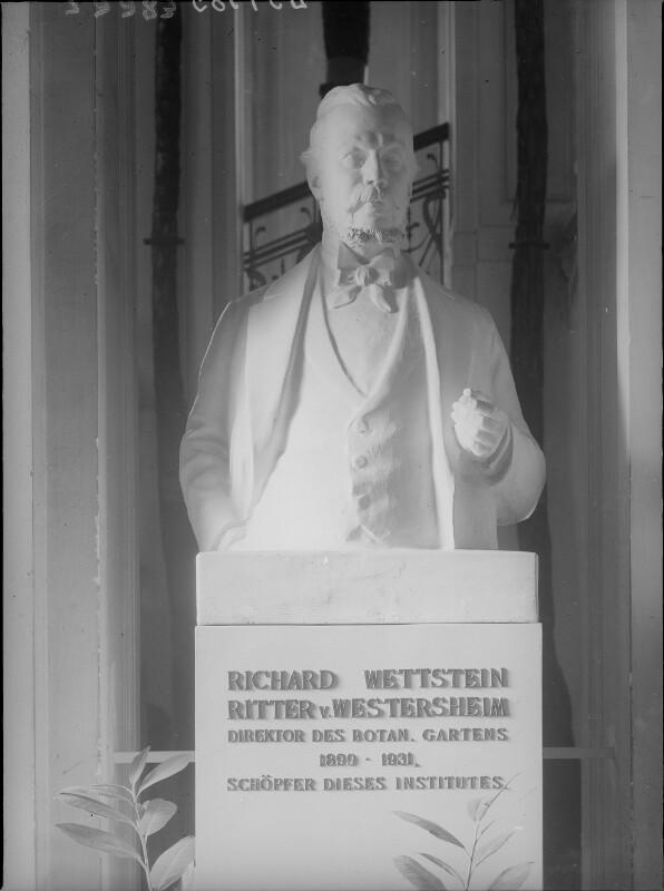 Wettstein, Richard von