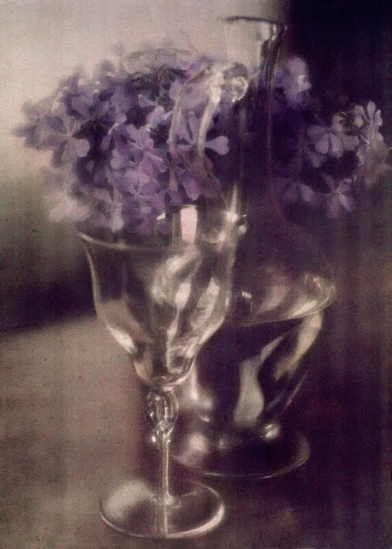 Stillleben: Blumen im Glas und Karaffe
