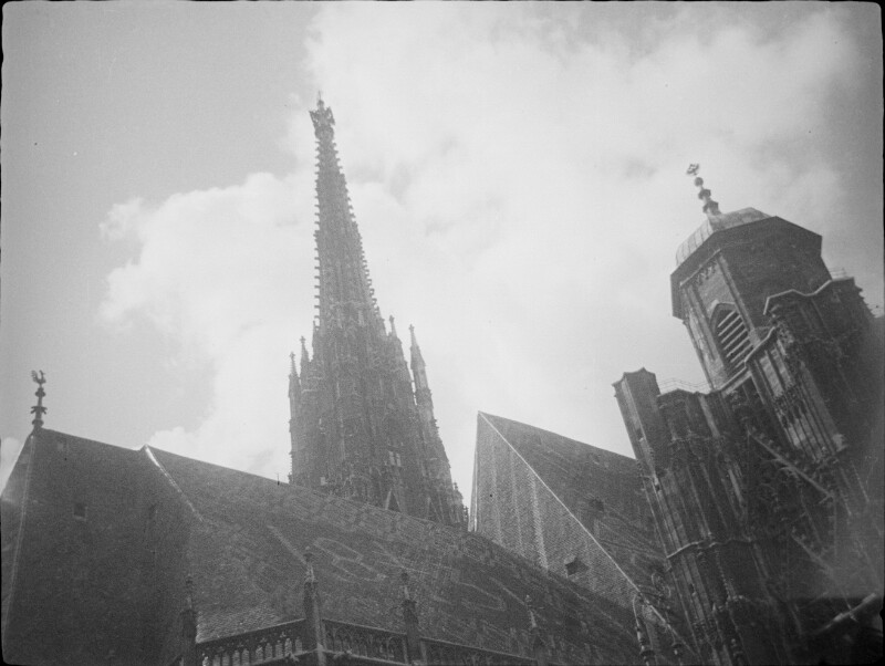 Der Stephansdom