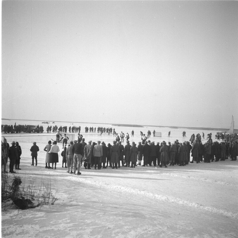 Winter am zugefrorenen Neusiedler See