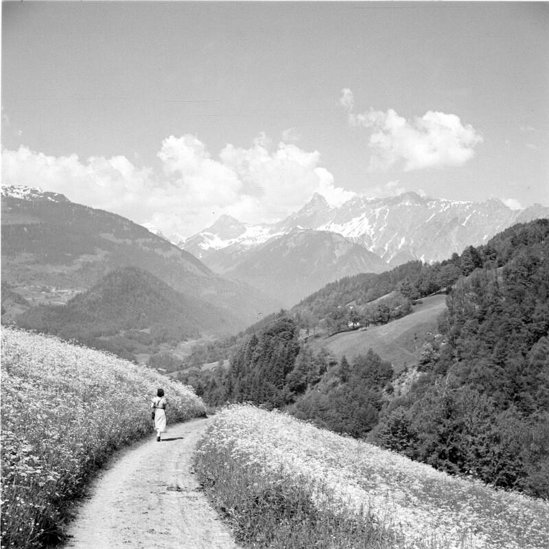 Spaziergang im Silbertal