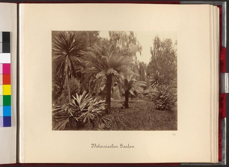 Sydney, Botanischer Garten (Royal Botanic Garden)