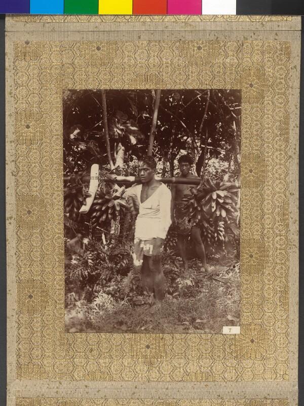 Bananenträger auf Tahiti