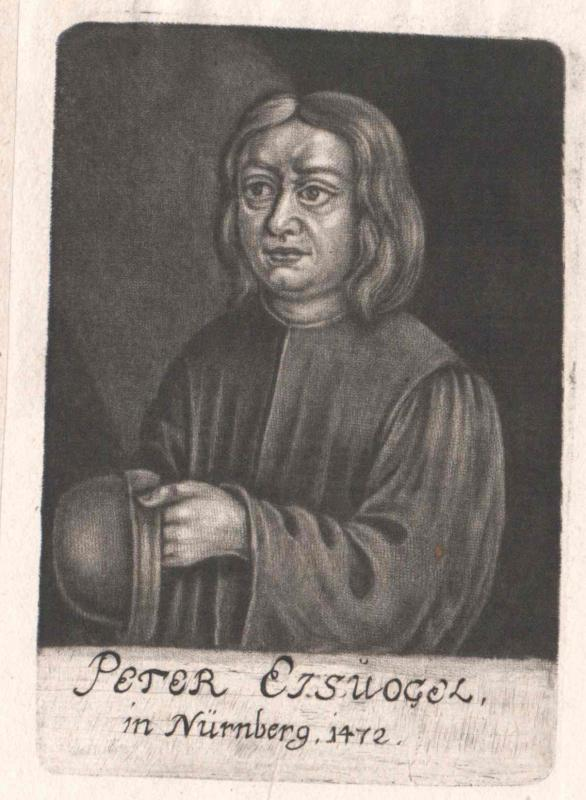 Eisvogel, Peter