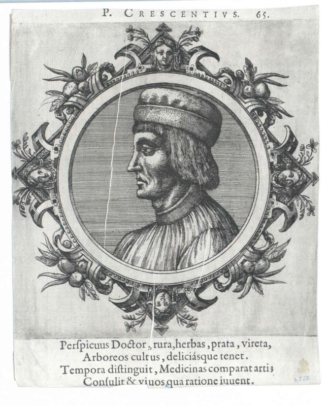 Crescentiis, Petrus de