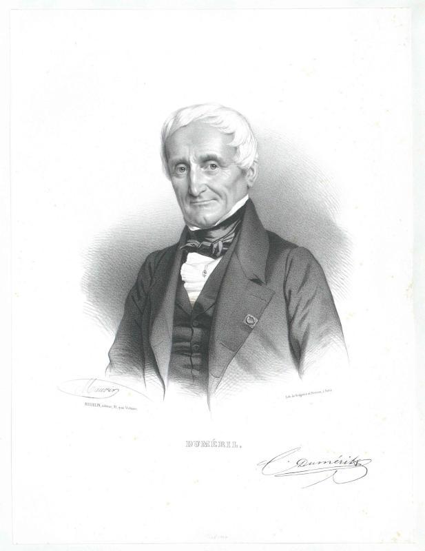 Duméril, André-Marie-Constant