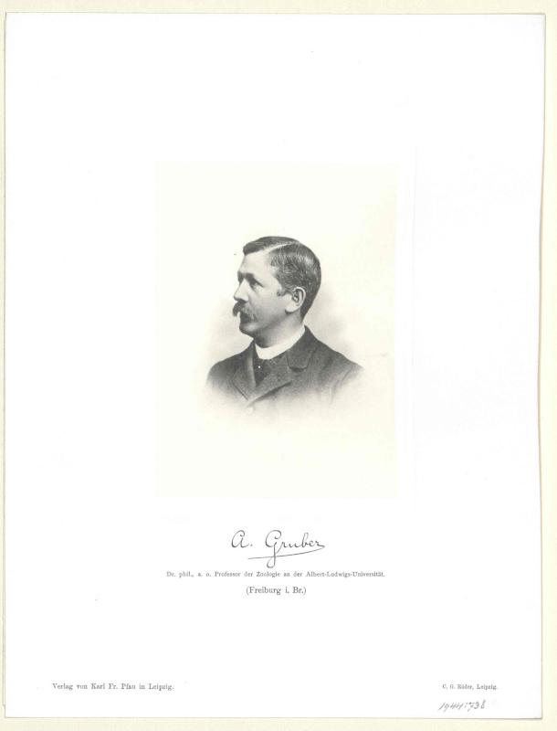 Gruber, August