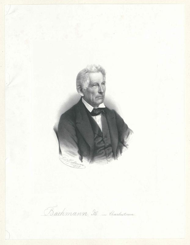 Bachmann, John