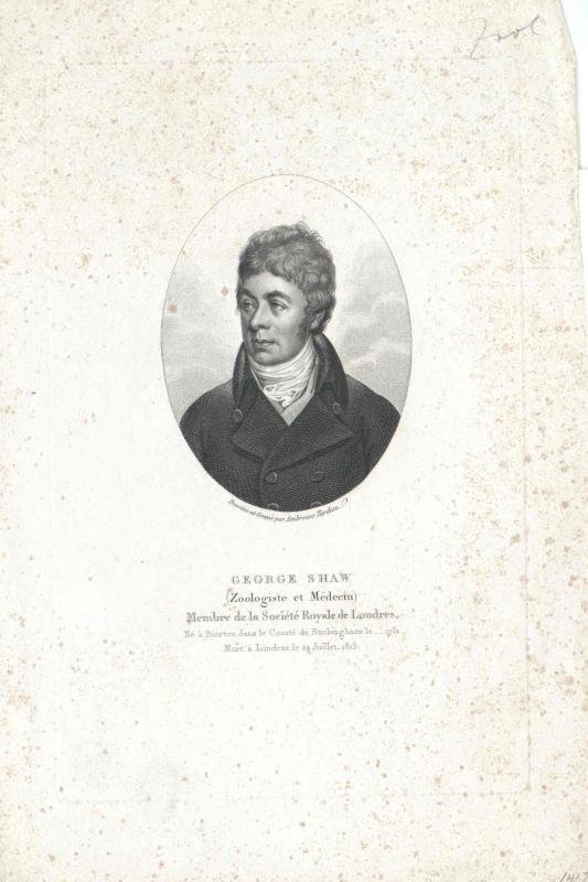 Shaw, George