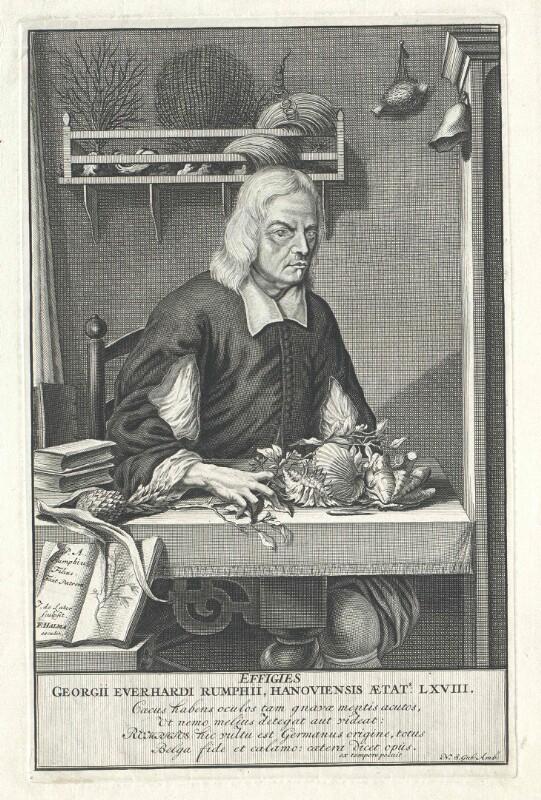 Rumph, Georg Eberhard