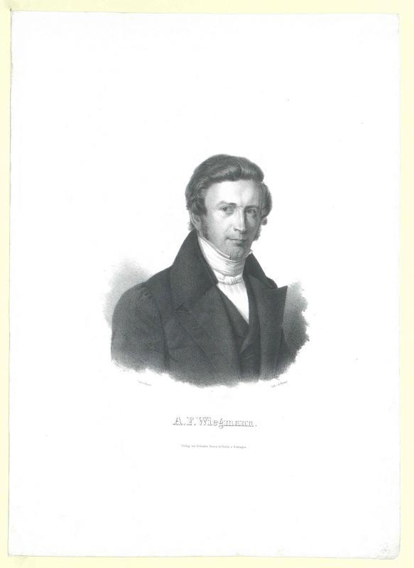 Wiegmann, Arend Friedrich August
