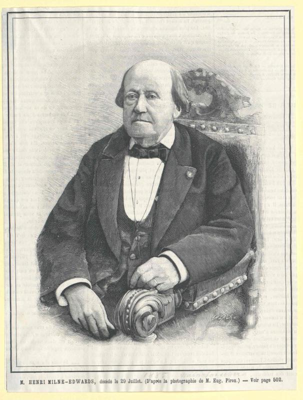 Edwards, Henri Milne