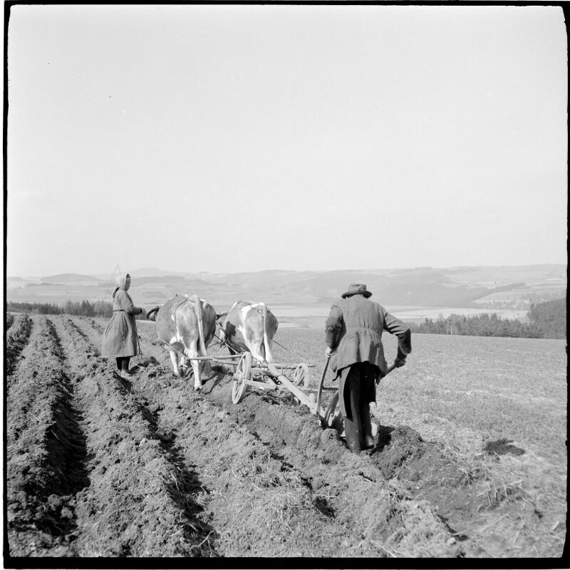 Marienbad 1939