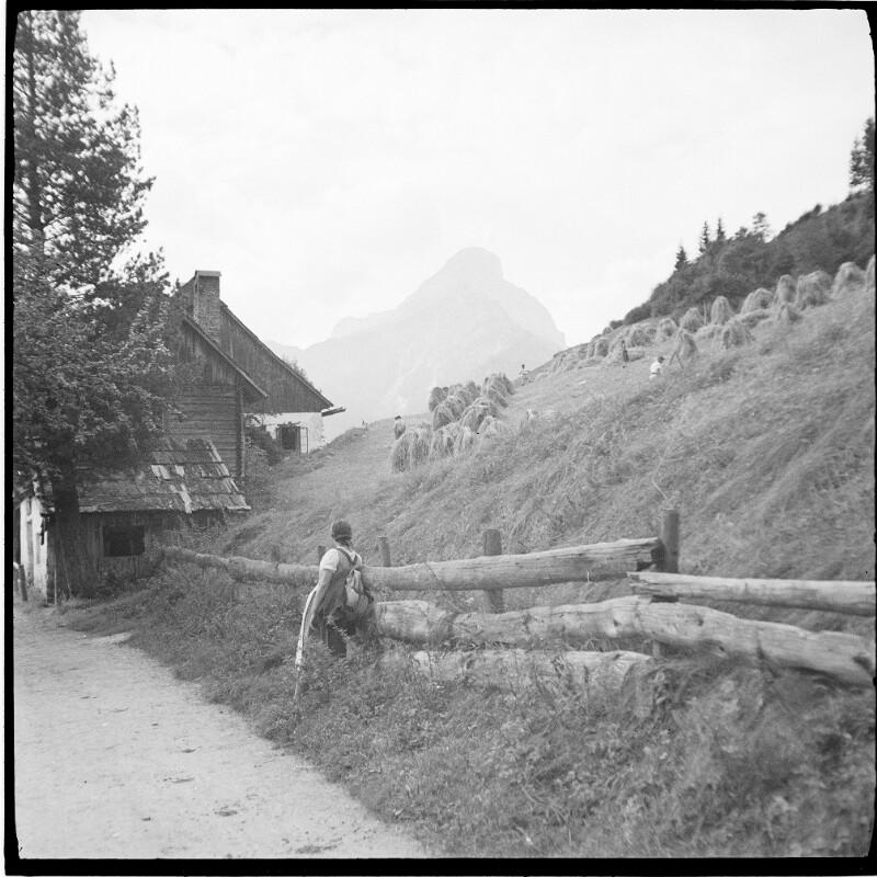 Wanderung in Neuberg/Mürz