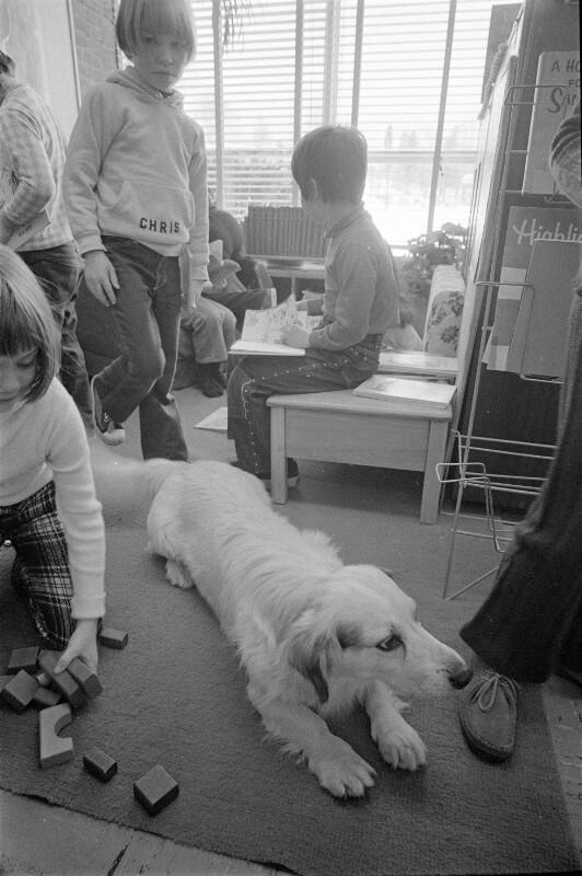 Kinder mit Hund in Pound Ridge, New York