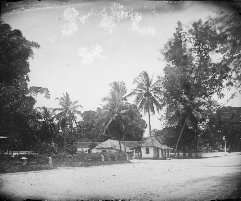 Häuser unter Palmen in Anjer