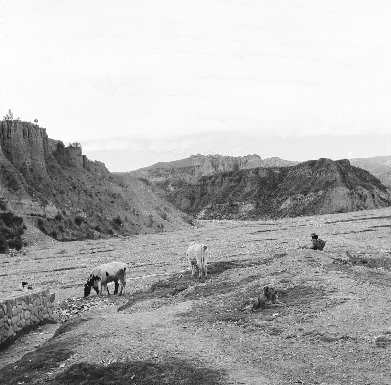 Bolivianische Landschaft