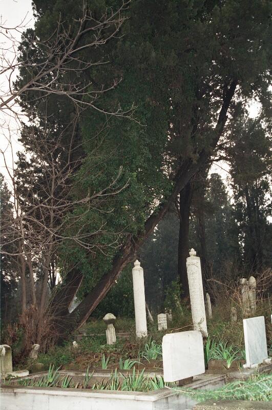 Blick auf Gräber