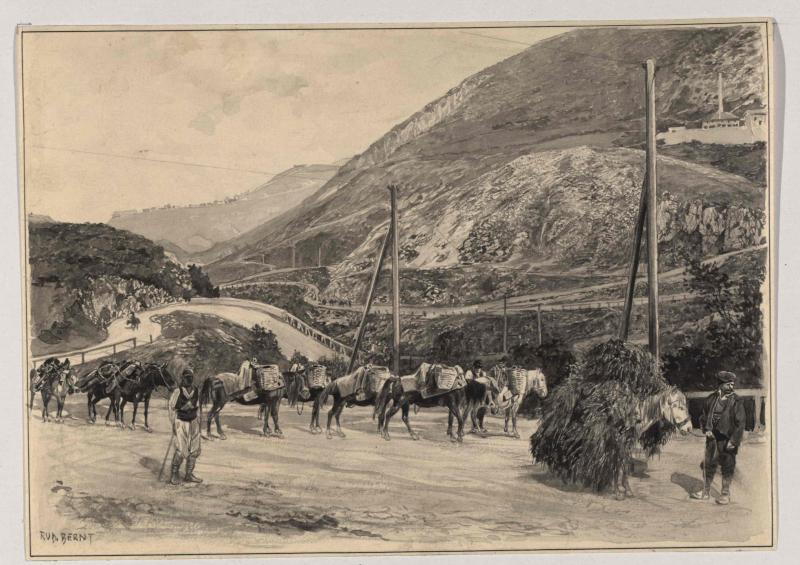 Bergstraße in Bosnien mit Maultierkarawane