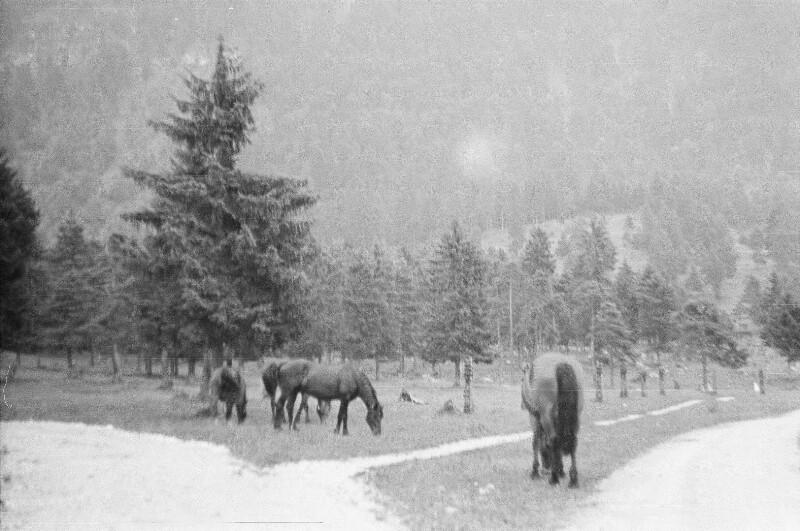 Landschaft bei Garmisch