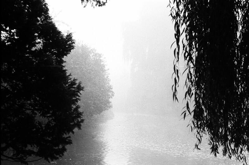 Flusslandschaft im Nebel