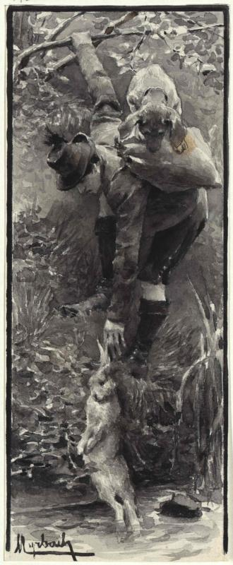 Hasenjagd - der scharfe Hund