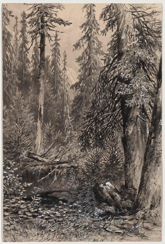 Ursprung der Moldau am Schwarzenberg bei Buchwald