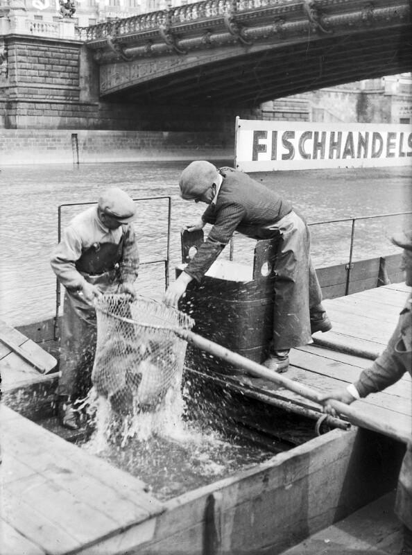 Städtischer Fischmarkt am Donaukanal