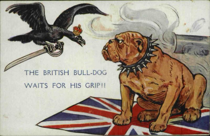 The british bull-dog waits for his grip!