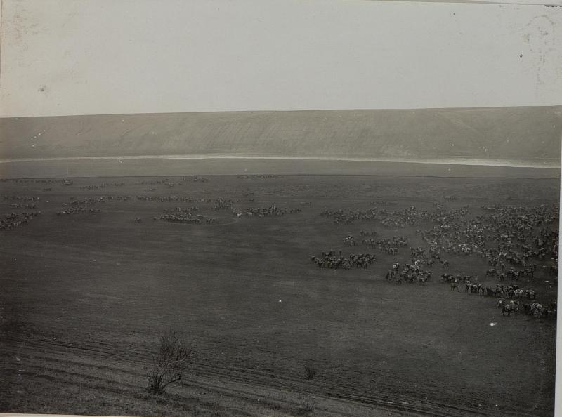 Abgesessene Kavallerie des Hionved-Husaren Regiments Nr. 7 und 8 in Doroschoutz