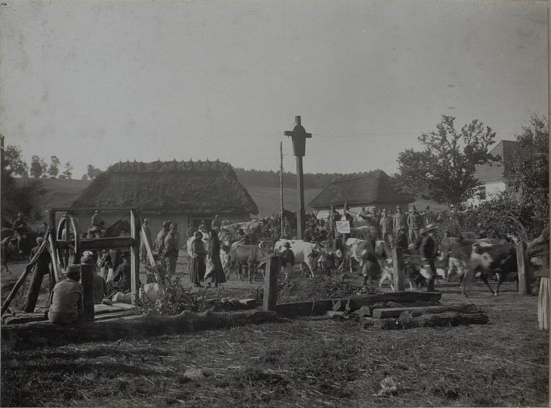 Abmarsch der Evakuierten in PANOWICE am 13.VIII.1916.