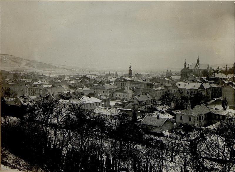 Ansicht von Brzezany.