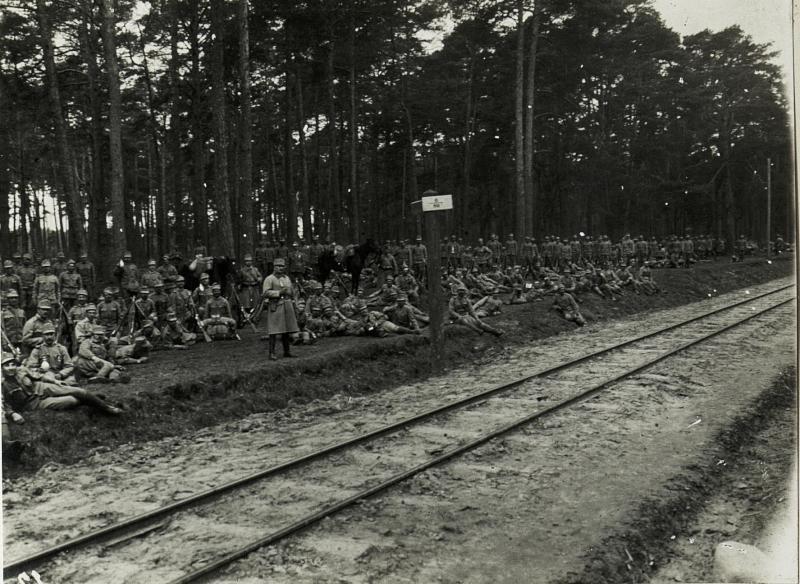 8. Marschbataillon, Hauptmann Fleischer des 31. nagyszebener Infanterieregiments im Marsche an die Front auf der Straße im Wald bei Piotrkòw.
