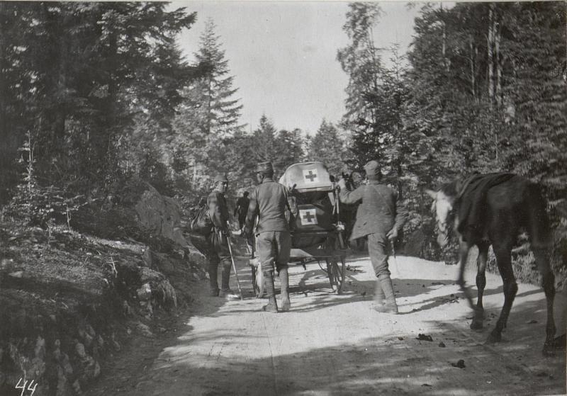 Abtransport Schwerverwundeter im Ternovanerwalde. 2.9.17.