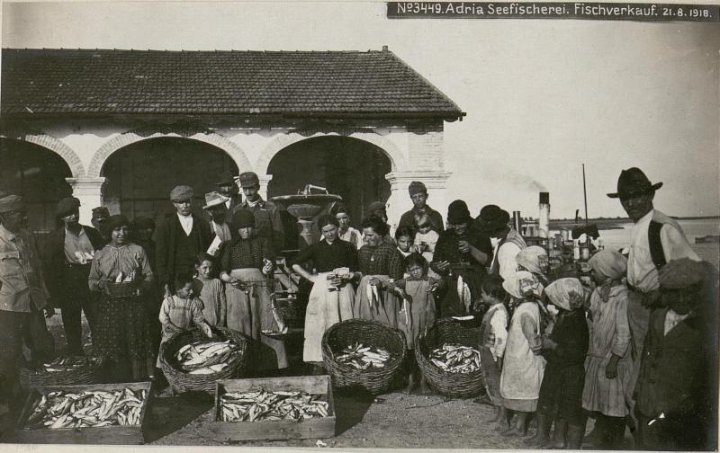 Adria Seefischerei. Fischverkauf.