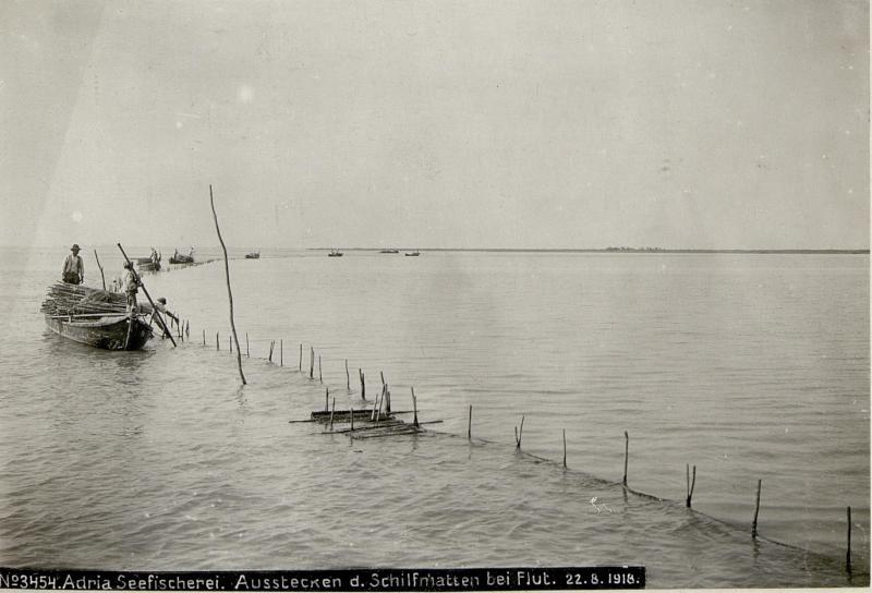 Adria Seefischerei. Ausstecken der Schilfmatten bei Flut.